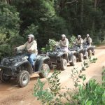 Hermanus Quads and ATV