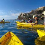 SA Forest Adventures Walkerbay adventures1