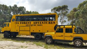 Cape Adventure Tours