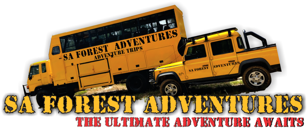 Adventure Day Tours